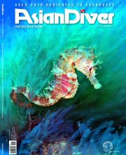 ad_141_bbb_cover