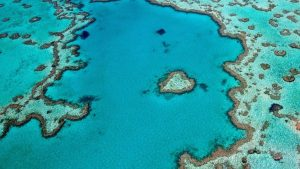 diving-asia-pacific-great-barrier-reef-australia