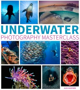 Cover of Underwater Photography Masterclass