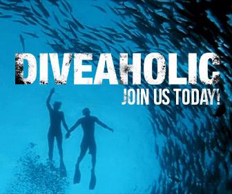 diveaholic-membership