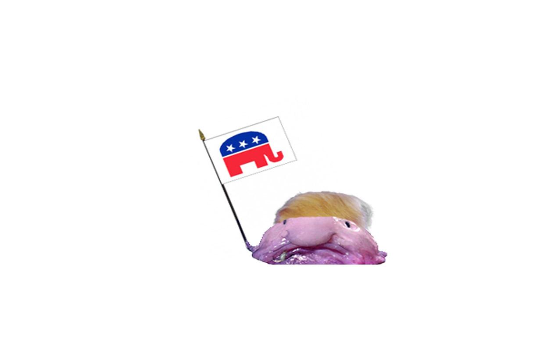 blobfish-trump