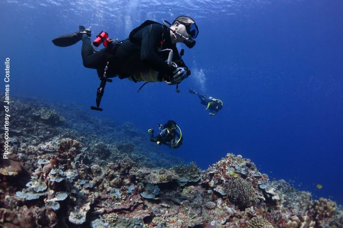 Club 25 Profile – James Costello (Diving Solutions Asia)