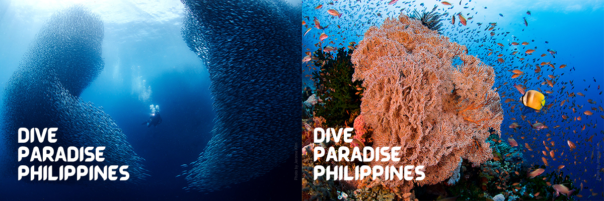 PHIDEX is the official dive expo of diving paradise Philippines