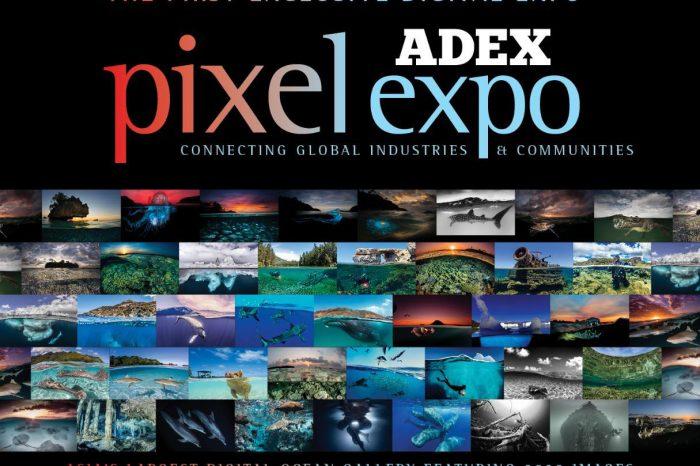 ADEX Pixel Expo 2020 – Asia's Biggest Digital Underwater Photo Gallery