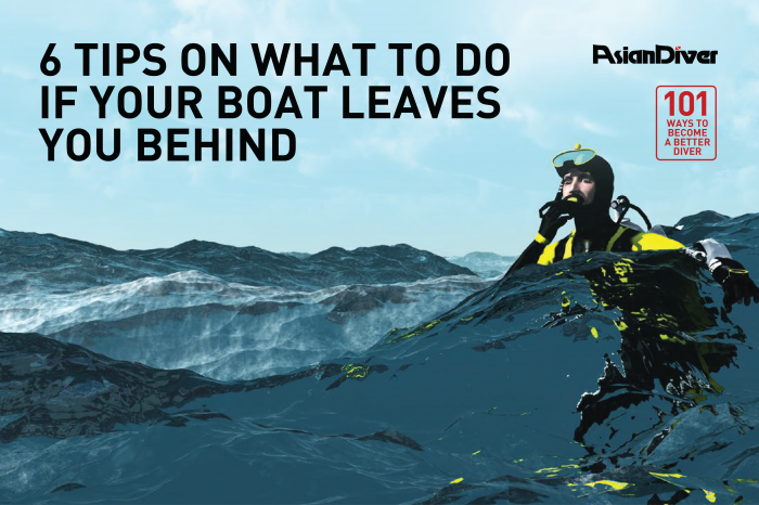 6 Tips On What To Do If Your Boat Leaves You Behind
