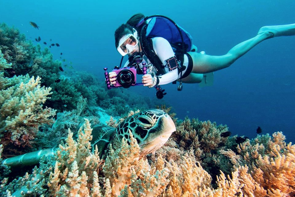 Spotlight on Ocean Citizen: From High Heels to Scuba Fins, Vanessa Vergara's Story is Going to Make You Want to Save the Ocean as well