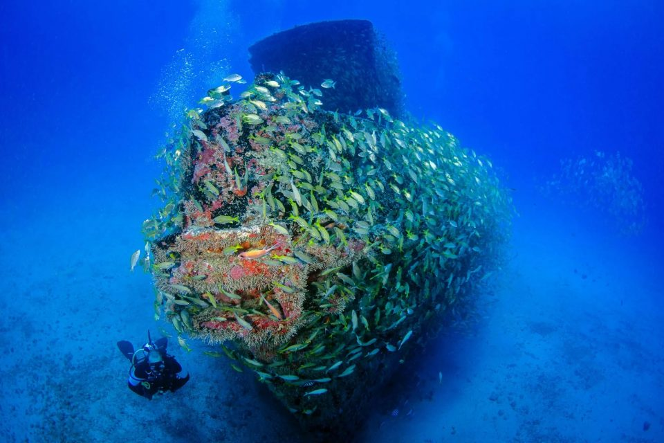 Best Wreck Dives In The World
