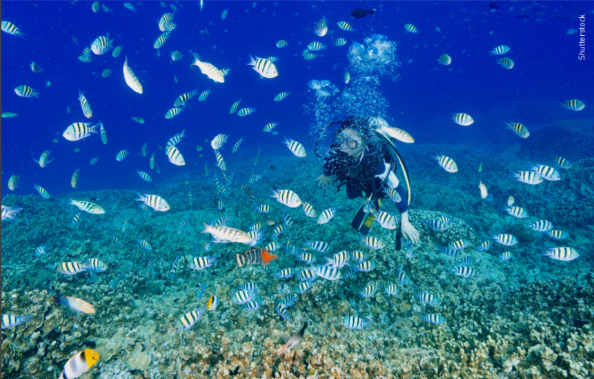 COVID-19 Diving in Guam: What you should know