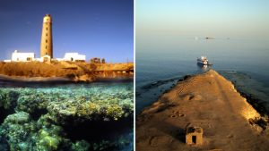 diving-the-red-sea-2