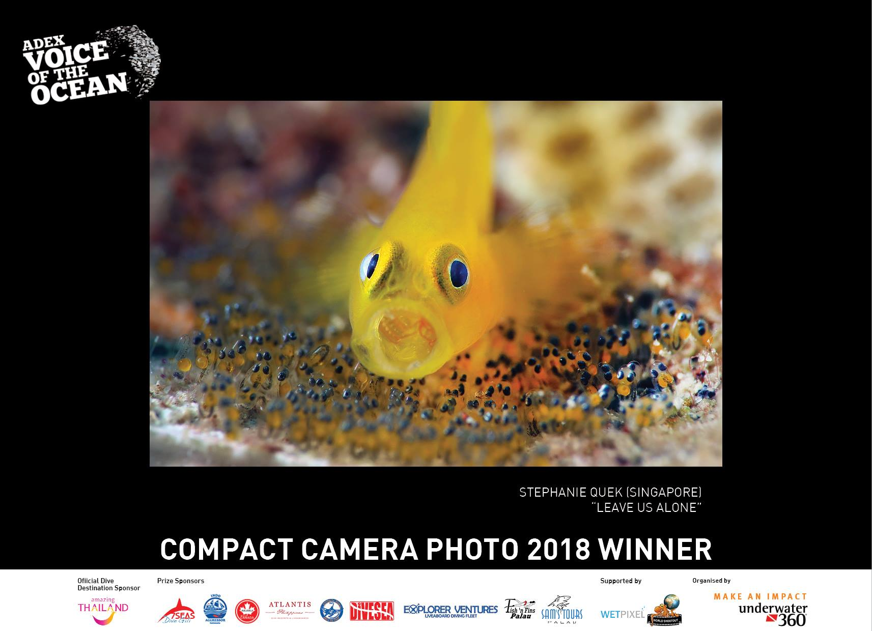 Voice of The Ocean, ADEX 2018, Underwater Photography, Marine Life, Goby