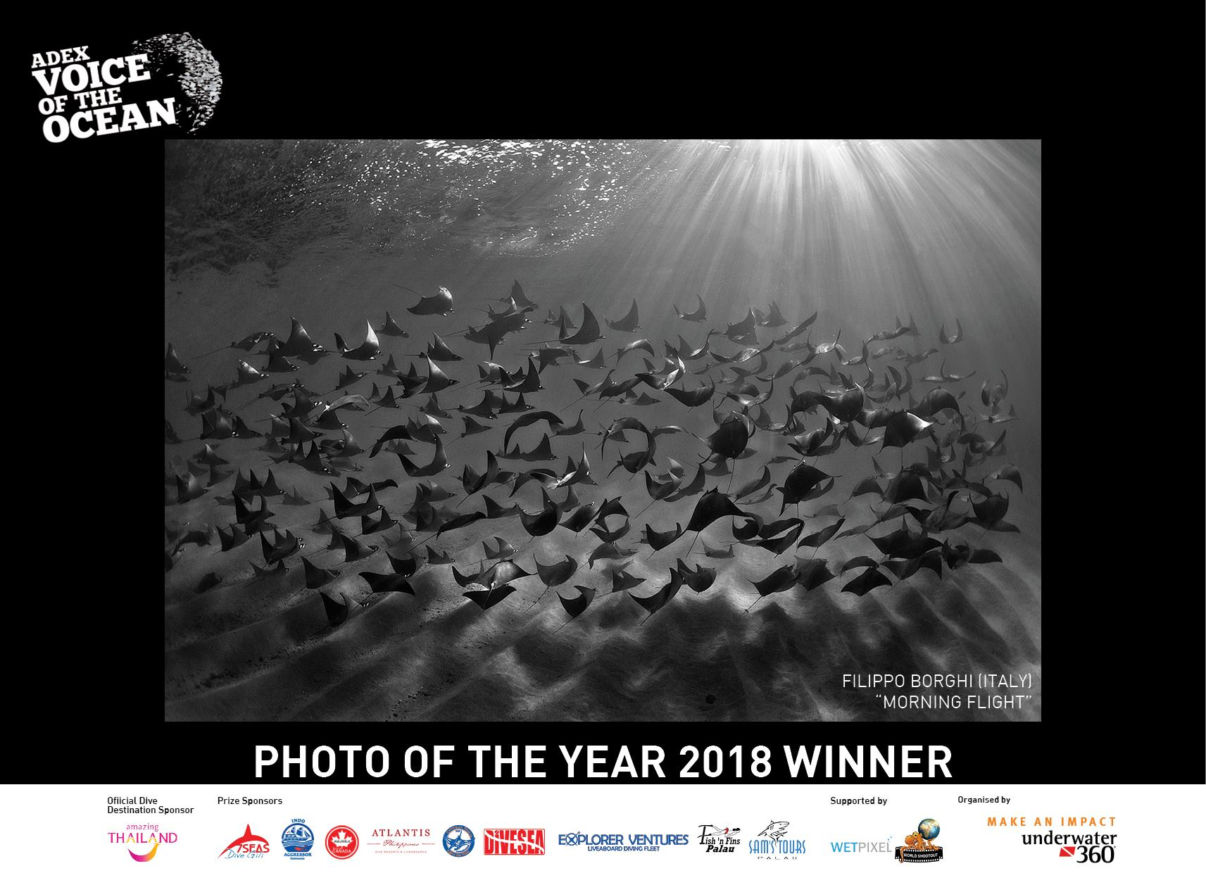 ADEX 2018, Voice of the Ocean, Underwater Photography, Manta Ray